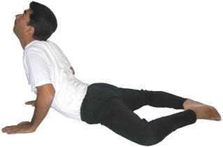 Yoga Stretch Ardha Bhujangasana Half Cobra Posture